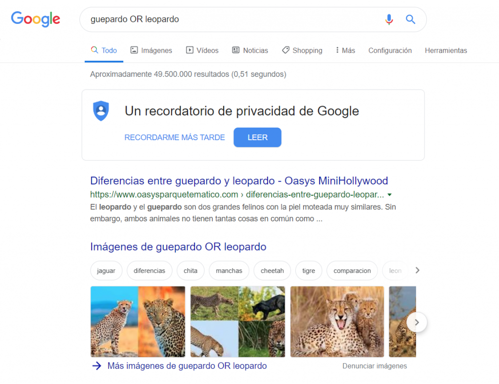 comando google OR